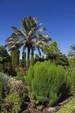 Κήποι και πηγές των Alcazar de Los Reyes Catà ³ licos στοκ εικόνες