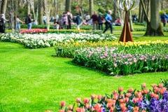 Κήποι λουλουδιών στις Κάτω Χώρες κατά τη διάρκεια της άνοιξη Κλείστε επάνω της άνθισης flowerbeds των τουλιπών, υάκινθοι, νάρκισσ στοκ φωτογραφίες με δικαίωμα ελεύθερης χρήσης