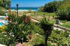 Κήποι ξενοδοχείων παραλιών στοκ φωτογραφία