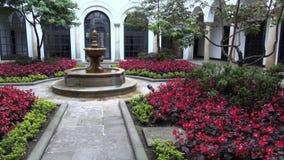 Κήποι λουλουδιών, κηπουρική, δενδροκηποκομία, εγκαταστάσεις, φύση απόθεμα βίντεο