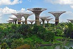 κήποι Σινγκαπούρη κόλπων Ασία στοκ εικόνα με δικαίωμα ελεύθερης χρήσης