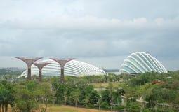 κήποι Σινγκαπούρη κόλπων Στοκ φωτογραφία με δικαίωμα ελεύθερης χρήσης