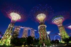 κήποι Σινγκαπούρη κόλπων στοκ εικόνες