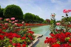 Κήποι στο Alcazar, Κόρδοβα, Ισπανία στοκ εικόνες με δικαίωμα ελεύθερης χρήσης
