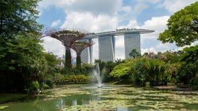Κήποι της Σιγκαπούρης από την πηγή κόλπων timelapse απόθεμα βίντεο
