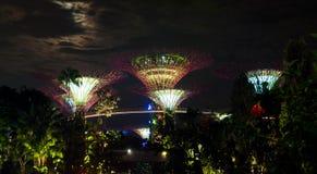 Κήποι της Σιγκαπούρης από τον κόλπο Στοκ Εικόνες