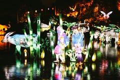 Κήποι του φωτός στο Μόντρεαλ στοκ εικόνες