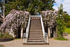 Κήποι του Castle Armadale Στοκ Εικόνα