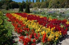 Κήποι του Castle Chenonceau στοκ εικόνα