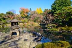 Κήποι kyu-Furukawa το φθινόπωρο στο Τόκιο στοκ εικόνες με δικαίωμα ελεύθερης χρήσης