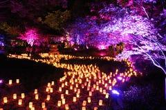 Κήποι Lennox φεστιβάλ του Νάρα Στοκ φωτογραφία με δικαίωμα ελεύθερης χρήσης