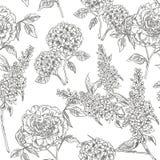 κήπος βικτοριανός floral πρότυπο άνευ ραφής επίσης corel σύρετε το διάνυσμα απεικόνισης ελεύθερη απεικόνιση δικαιώματος