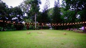 Κήπος βραδιού σε 7pm στοκ εικόνες