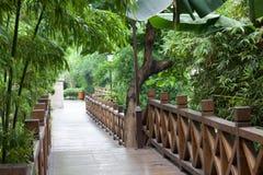 κήπος γεφυρών για πεζούς σε όλους ξύλινο Στοκ Εικόνες