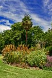 κήπος δονούμενος στοκ φωτογραφία με δικαίωμα ελεύθερης χρήσης