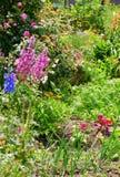 κήπος εξοχικών σπιτιών Στοκ Φωτογραφία
