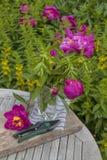 Κήπος εξοχικών σπιτιών Στοκ Φωτογραφίες