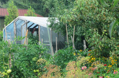 Κήπος εξοχικών σπιτιών Στοκ Εικόνα