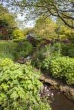 Κήπος εξοχικών σπιτιών Cotswold με το ρεύμα, Αγγλία Στοκ Εικόνα