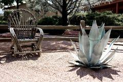 κήπος ερήμων στοκ φωτογραφίες με δικαίωμα ελεύθερης χρήσης