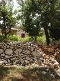 κήπος ελληνικά Στοκ φωτογραφία με δικαίωμα ελεύθερης χρήσης