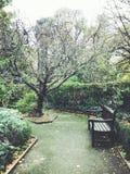 Κήπος εδρών Στοκ Φωτογραφίες