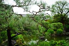 κήπος Ιαπωνία ιαπωνικό Κιότ& στοκ εικόνες