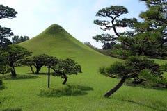 κήπος ιαπωνικά Στοκ Εικόνα