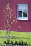κήπος ιδιωτικός Στοκ φωτογραφία με δικαίωμα ελεύθερης χρήσης
