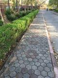κήπος Ινδός στοκ εικόνες