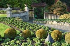 κήπος ιταλικά πτώσης Στοκ φωτογραφία με δικαίωμα ελεύθερης χρήσης
