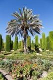 κήπος ιταλικά Στοκ Φωτογραφίες