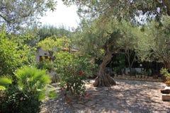 κήπος ιταλικά Στοκ εικόνες με δικαίωμα ελεύθερης χρήσης