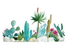 Κήπος κάκτων σε Watercolor στοκ εικόνες