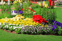 κήπος λουλουδιών ανασκόπησης Στοκ φωτογραφία με δικαίωμα ελεύθερης χρήσης