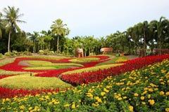 κήπος λουλουδιών Στοκ εικόνες με δικαίωμα ελεύθερης χρήσης