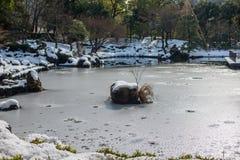 Κήπος με τη λίμνη και το χιόνι, Yokohama, Τόκιο, Ιαπωνία Στοκ Εικόνα
