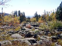 Κήπος με τις πέτρες, Σιβηρία στοκ εικόνες