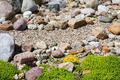 Κήπος με το σχέδιο από τις εγκαταστάσεις και τις πέτρες κήπων Στοκ Εικόνες