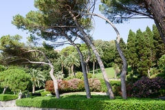 Κήπος μιας βίλας σε Levano στη Λιγυρία Στοκ Εικόνα