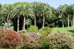 Κήπος μιας βίλας σε Levano στη Λιγυρία Στοκ Εικόνες