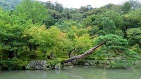 Κήπος ναών Tenryuji σε Arashiyama, Κιότο Στοκ Εικόνες