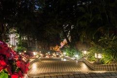 Κήπος νύχτας στο Χονγκ Κονγκ Στοκ εικόνα με δικαίωμα ελεύθερης χρήσης