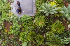 Κήπος ουρανού Στοκ εικόνες με δικαίωμα ελεύθερης χρήσης