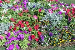 Κήπος λουλουδιών στην κοιλάδα Στοκ φωτογραφία με δικαίωμα ελεύθερης χρήσης