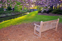 κήπος πάγκων στοκ φωτογραφία