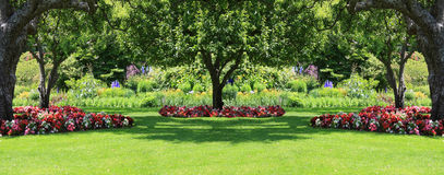 Κήπος πάρκων Στοκ Εικόνα