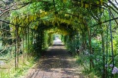 Κήπος παλατιών του Hampton Court στοκ εικόνες