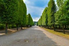 Κήπος παλατιών Schönbrunn στη Βιέννη Στοκ φωτογραφία με δικαίωμα ελεύθερης χρήσης
