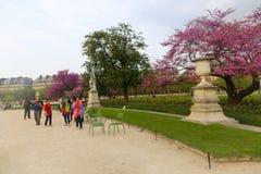 κήπος Παρίσι Στοκ φωτογραφία με δικαίωμα ελεύθερης χρήσης